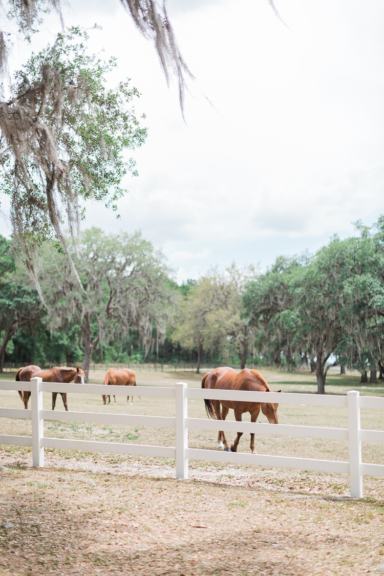 lange-farm-florida-wedding-bridal-musings-kara-ricky-1.jpg