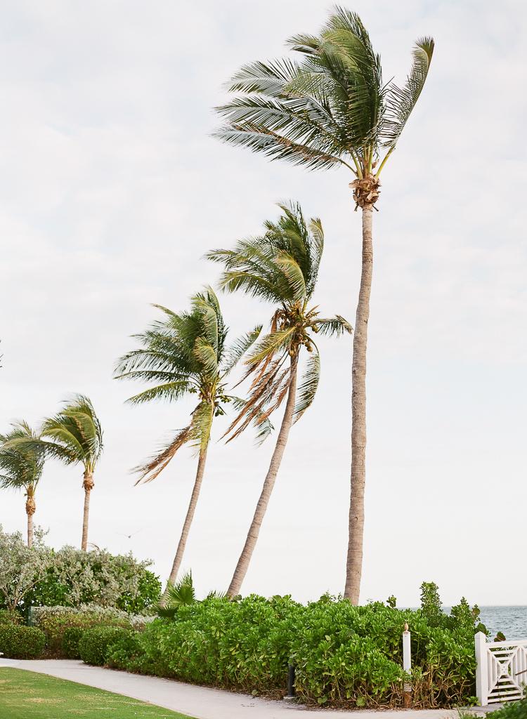 south-seas-island-resort-wedding-captiva-florida-photography-lauren-galloway-1.jpg