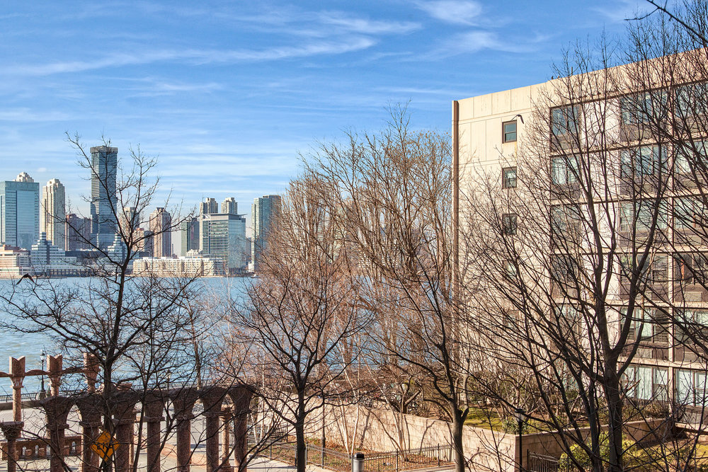 20180306_350albanyst-ht_view.jpg