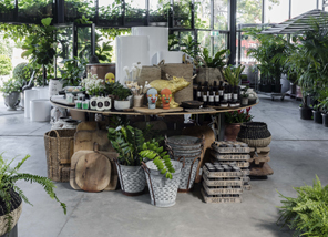photo inside the garden life store in st peters - Garden Life