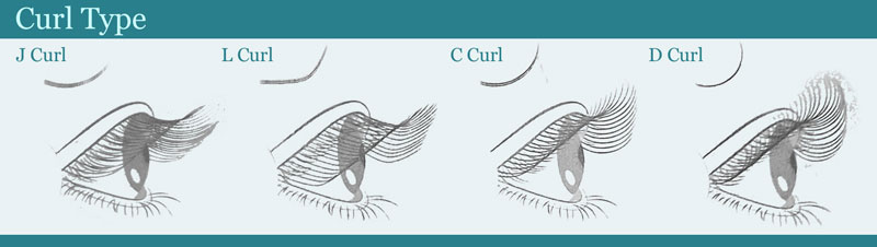 A side view of the curl degree of the different types of curl