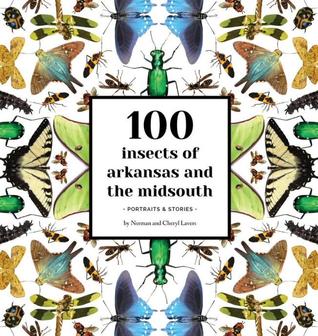 100 Insects of Arkansas Cover.JPG