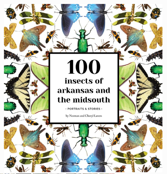100 Insects of Arkansas and The Midsouth.PNG