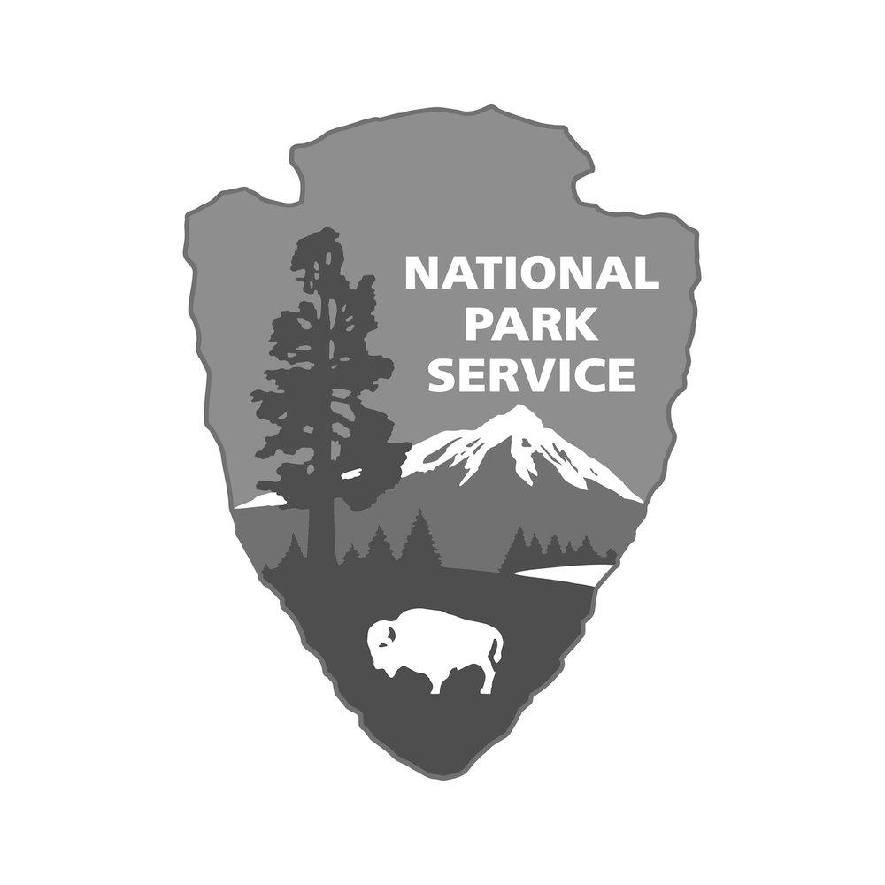 NPS Logo.jpg