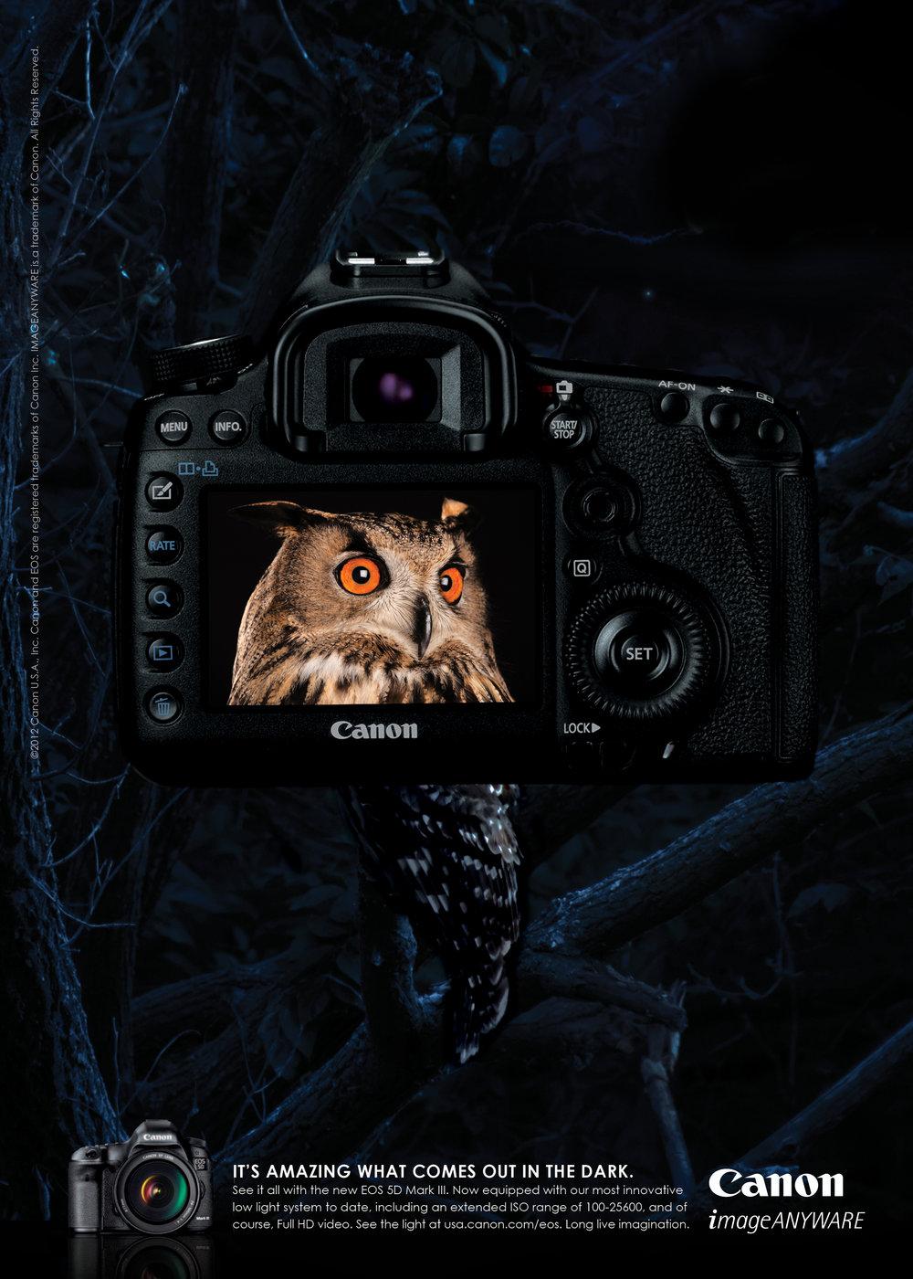 Canon Owl 10.jpg