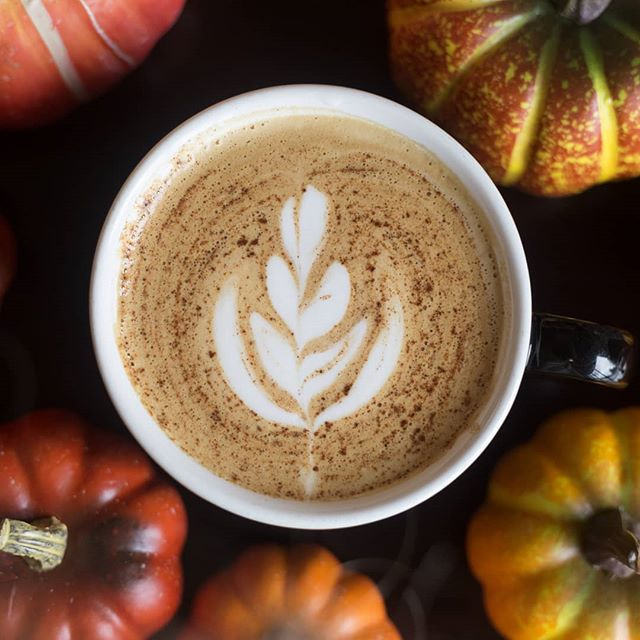 Is that cinnamon or cocoa? Which would you like? Let us know!  #eatlocalhsv #ihearthsv #madisonal #huntsvilleal #coffeeshop #latteart