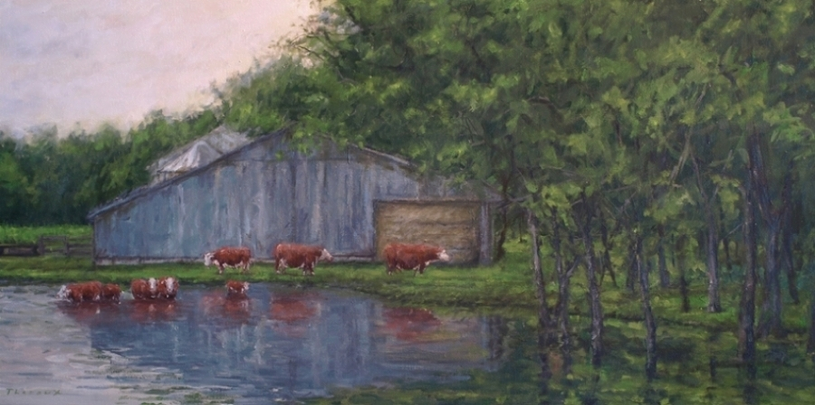 RED CATTLE IN POND