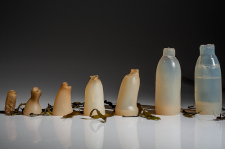 A water bottle made from algae? The wave of the future? Could be.