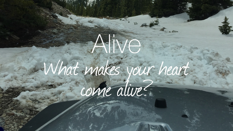 Making Your Heart Come Alive