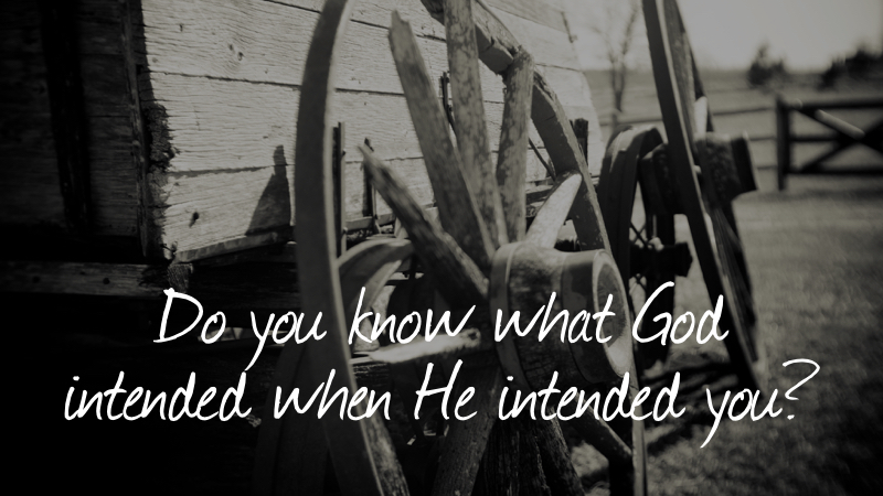 Pioneers-Do you what God intended when He intended you?