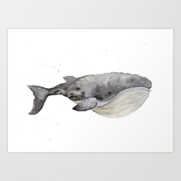 whale-1-cqd-prints.jpg
