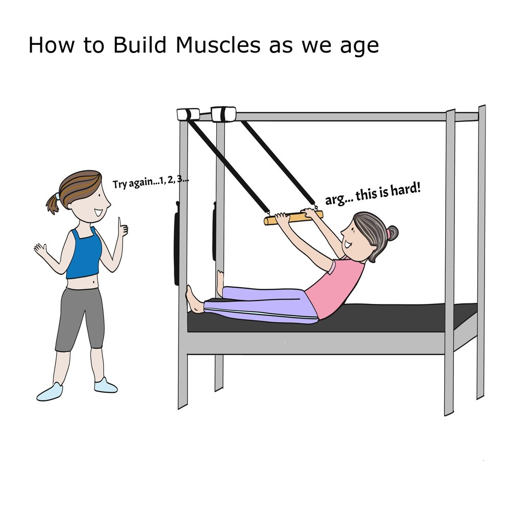 BuildMuscle01.jpg
