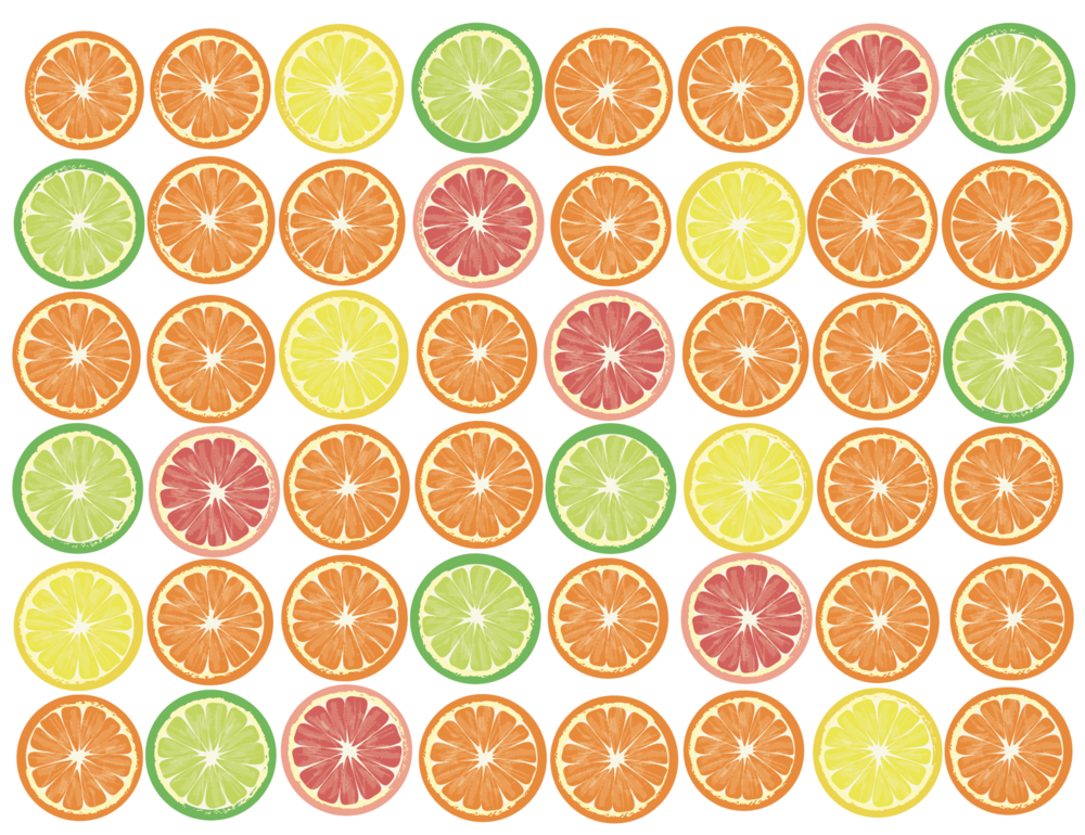 Citrus - Vector Illustration
