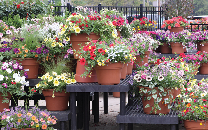 25% off all planters at Prairie Garden in Champaign, IL.