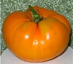Kellogg Breakfast Tomato