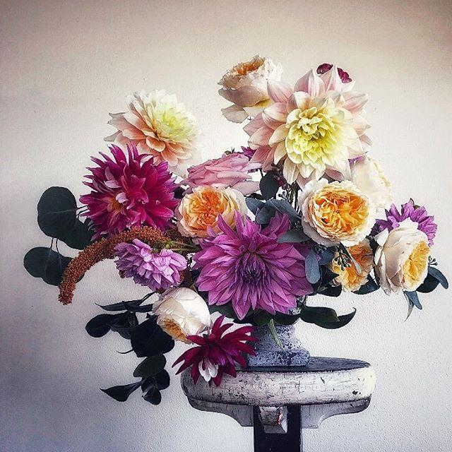 Dahlias are always a good idea!💡 #dahlia #seasonalflowers #gardenstyle