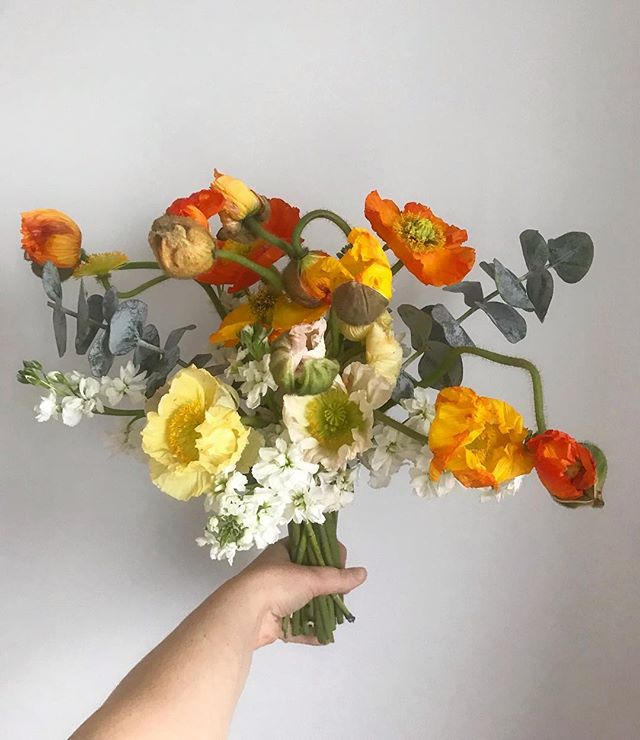 Happy Monday! 🧡💛 #poppy #floralphotography #poppylove
