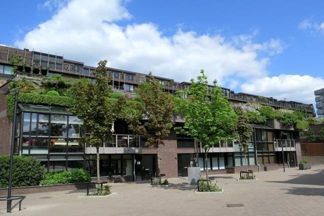 Medina, Eindhoven