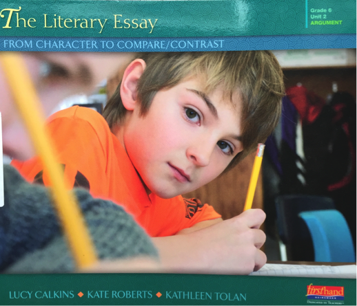 The Literary Essay: From Character to Compare / Contrast