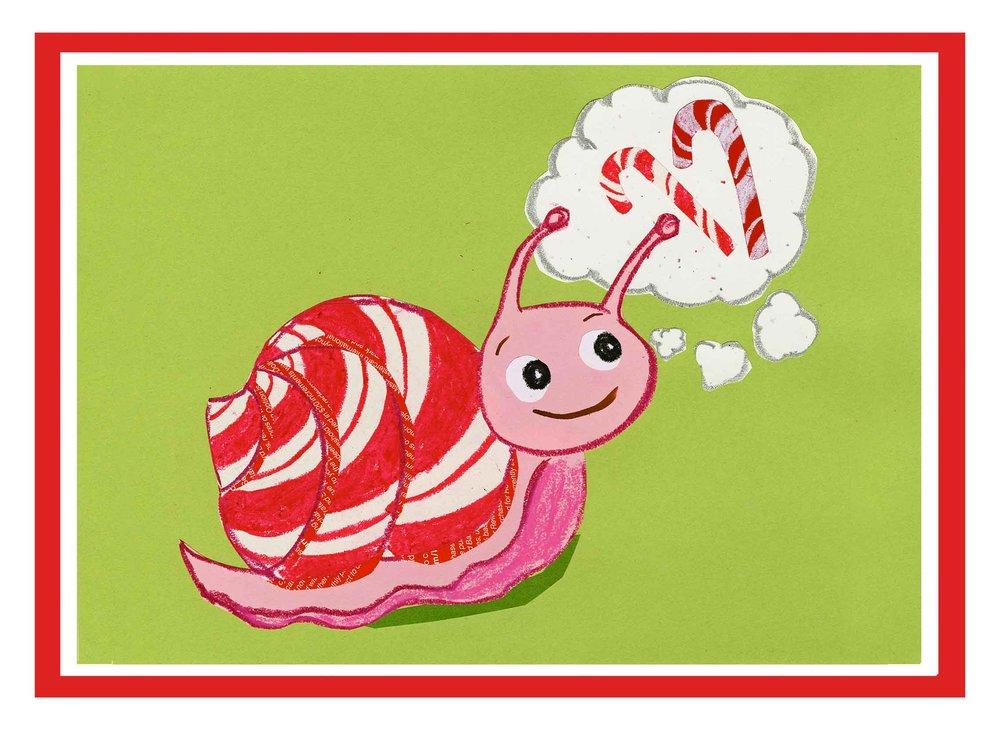 Candycane snail!