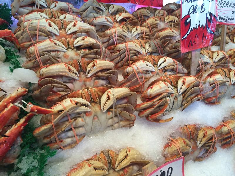 crabs (1).jpg