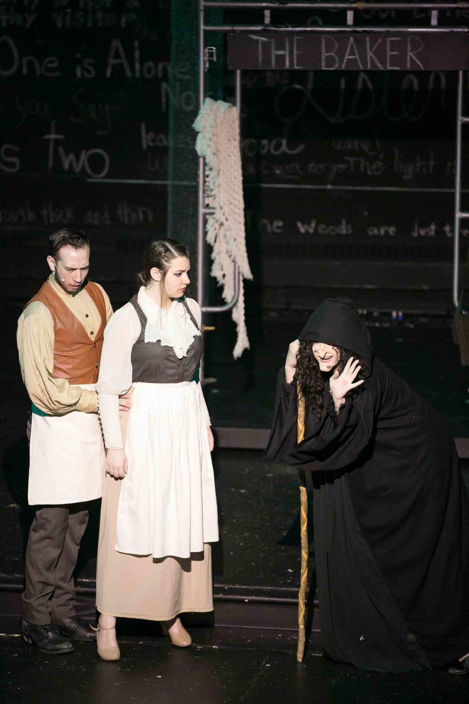 0033 Fiddleferns Cast.jpg
