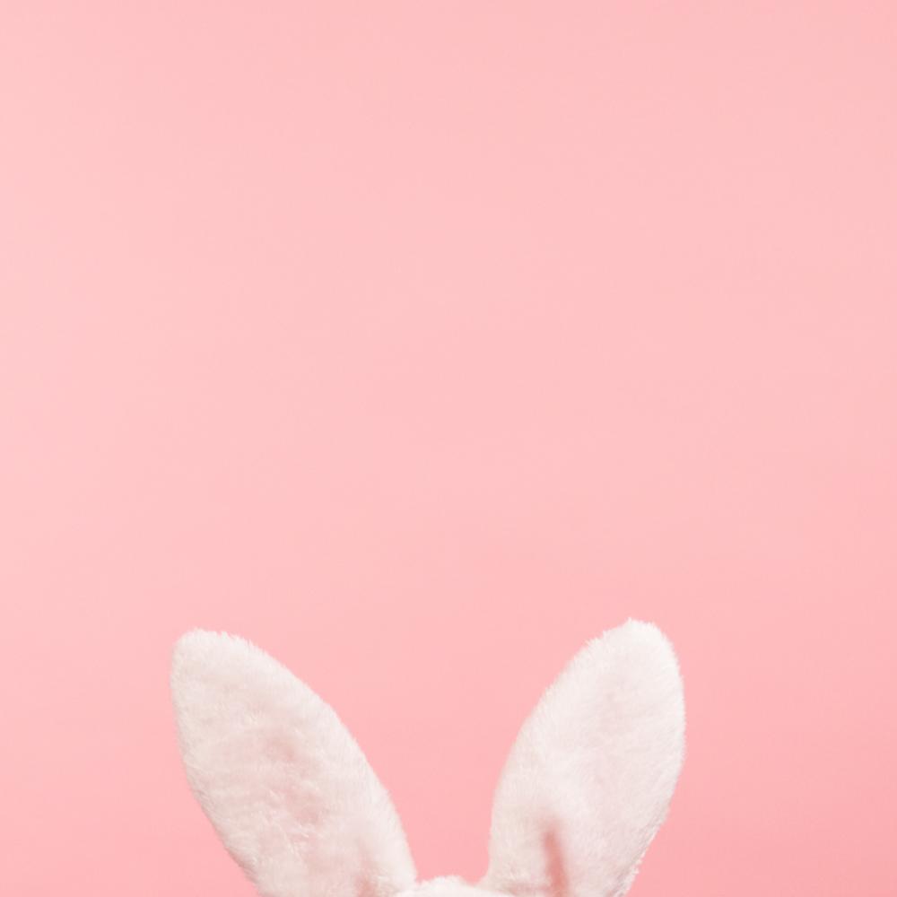 BunnyEars.png
