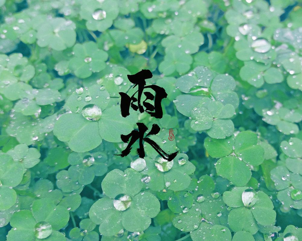 雨水桌布_手機版.jpg