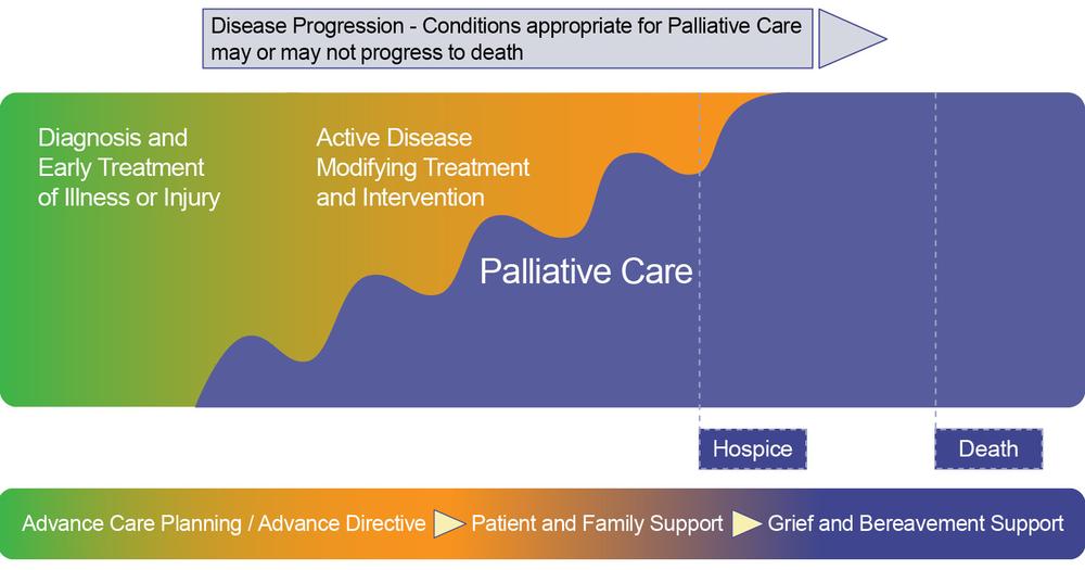 "Source: Catholic Health Association ""How Four Catholic Health Systems Approach Palliative Care"" January-February 2011"