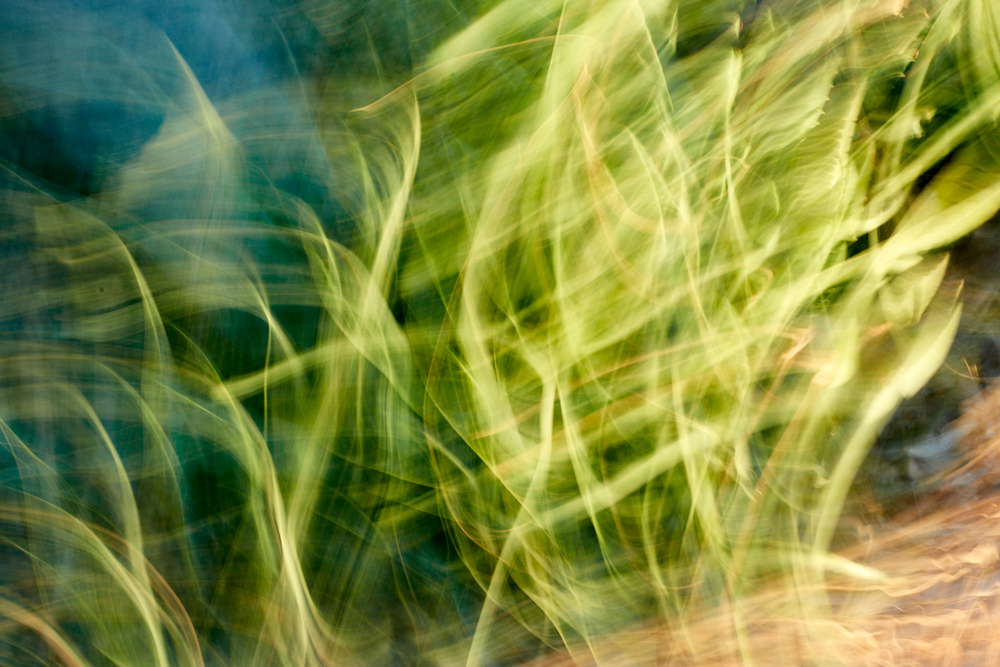 blum_j_abstracts_0 14.jpg