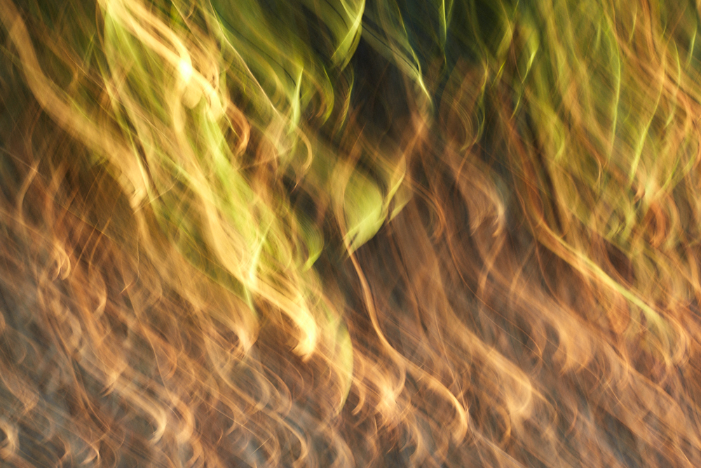 blum_j_abstracts_0 12.jpg