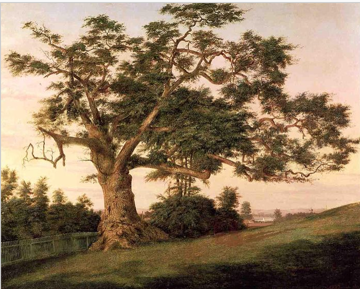 The Charter Oak , oil on canvas, Charles De Wolf Brownell, 1857.  Wadsworth Atheneum