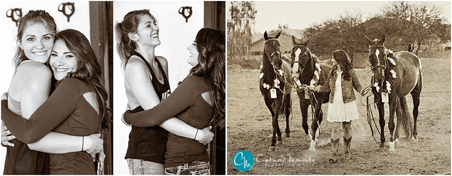 Bella Marino Captured Moments by Rita and Company horses