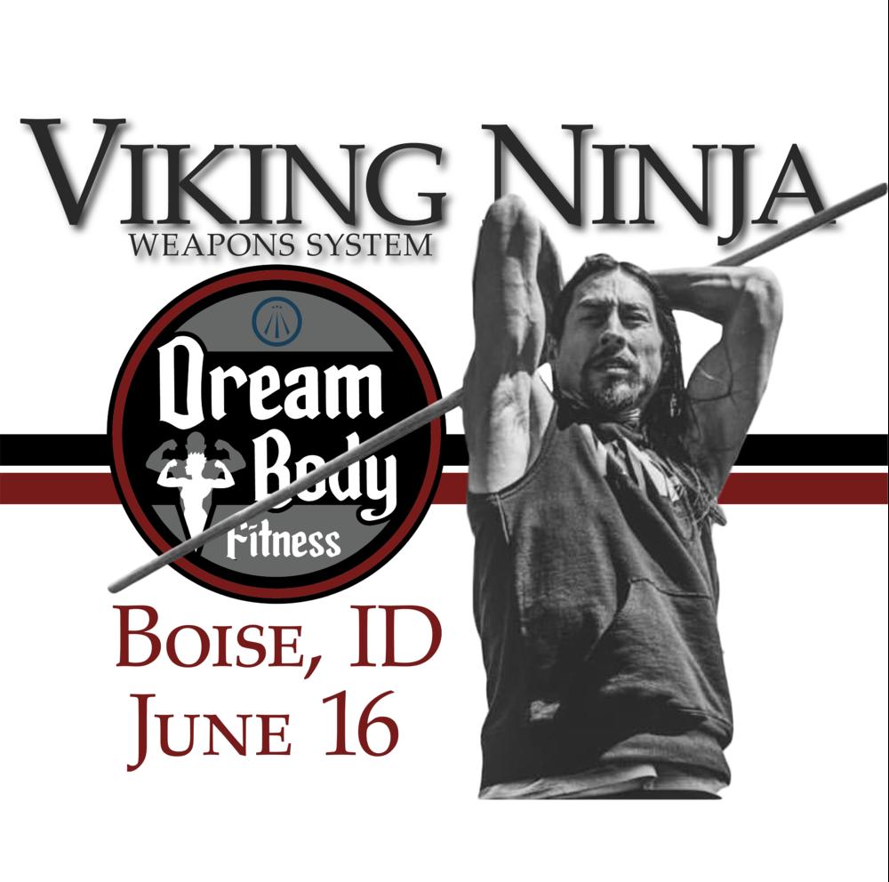 Viking Ninja Weapons System - Sat, June 16, 2018Dream Body FitnessMeridian, ID 83642