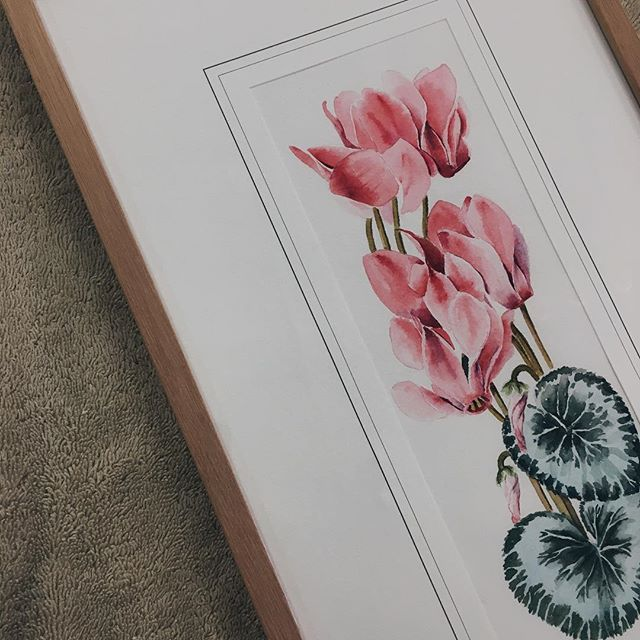 Hump day blooms 🌷 . . . #billabongframinggallery #customframing #pictureframing #originalart #watercolour #italianart #travelart #timberframe #flower #interior #style