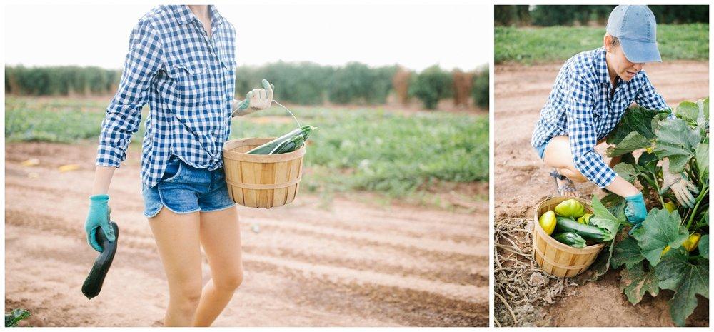 Reimer Farms__Lubbock Texas produce garden_20.jpg
