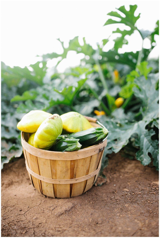 Reimer Farms__Lubbock Texas produce garden_23.jpg