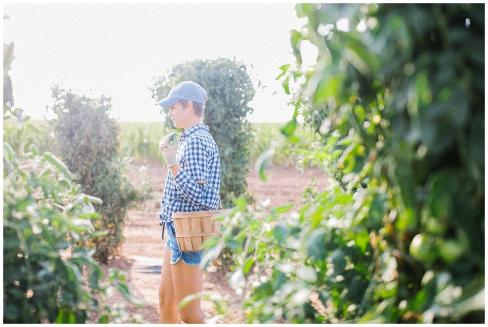 Reimer Farms__Lubbock Texas produce garden_32.jpg