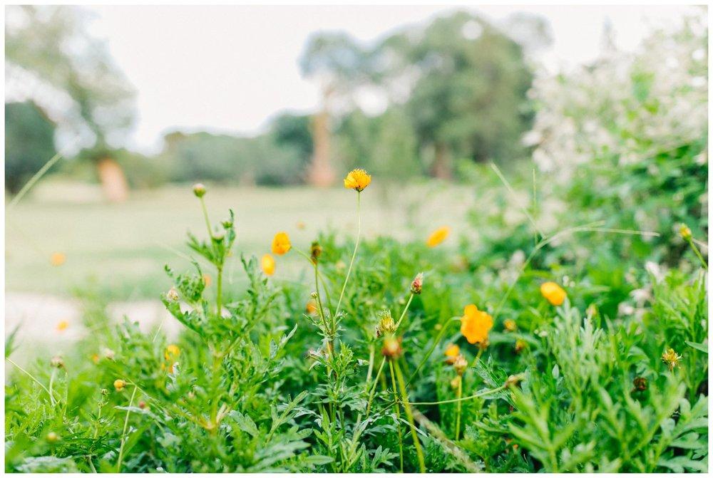Kamie_Lubbock arboretum bridal portraits_25.jpg