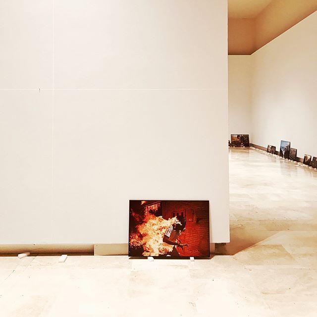 Ci siamo quasi!! L'allestimento prosegue a @palazzoesposizioni per la #mostra @worldpressphoto #2018 • 27 Aprile-27 Maggio #Roma #savethedate #staytuned #wpph2018 #professionalphotography