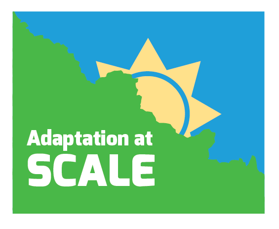 Adaptation at Scale