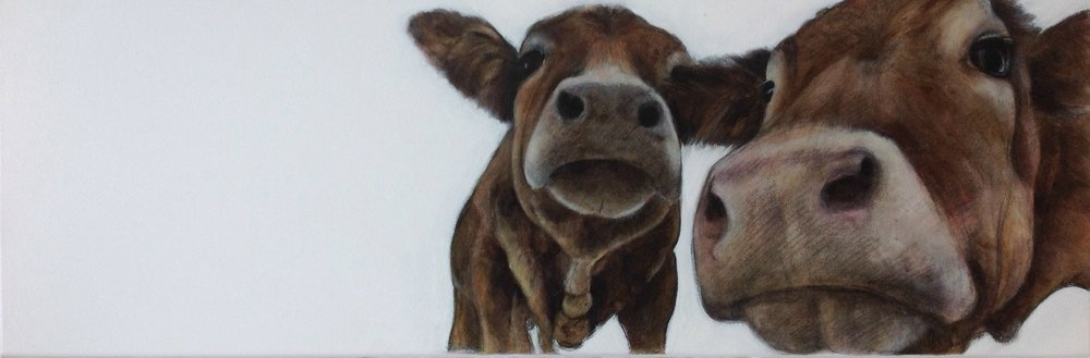 Patsy and Edina(cows) 300 x 900mm CharlesHannah.JPG