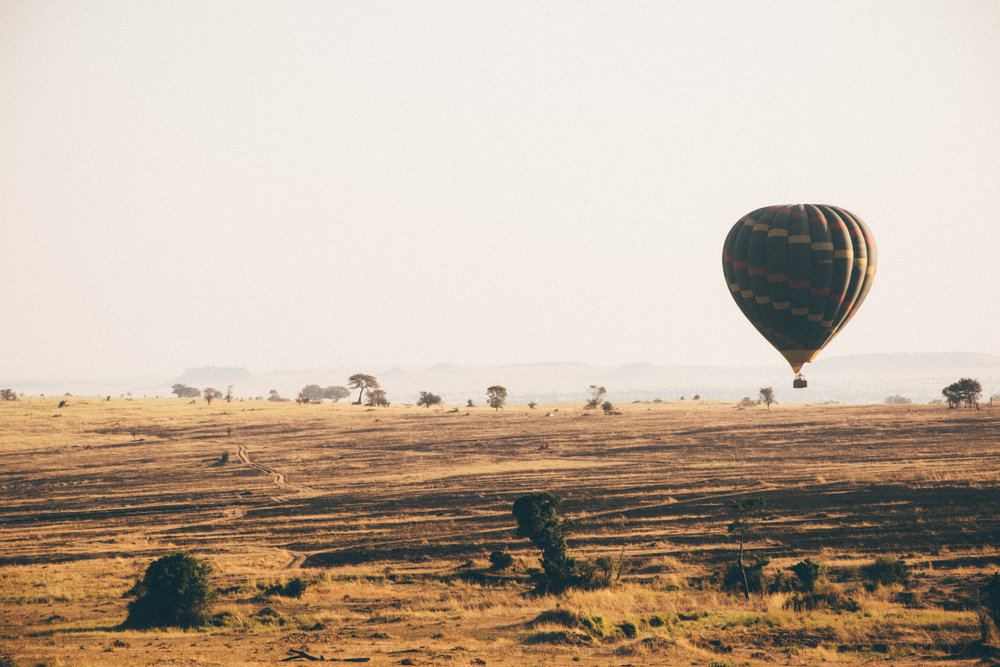 Le Serengeti, Tanzanie