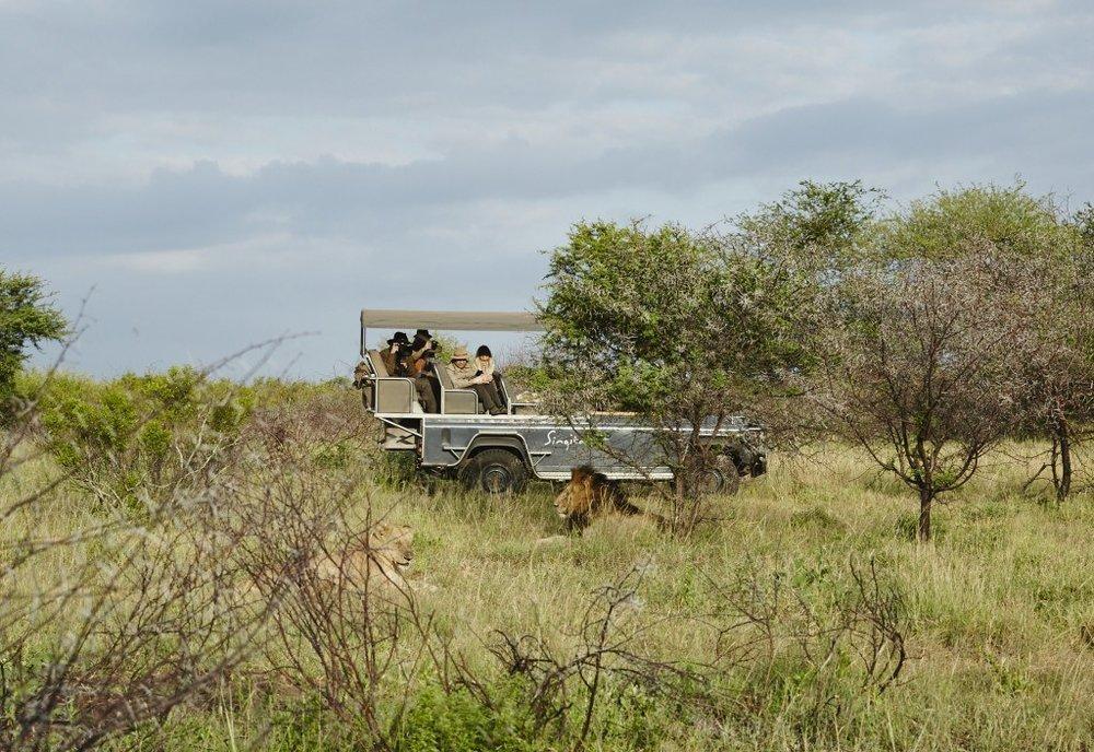 Safari dans des réserves privés