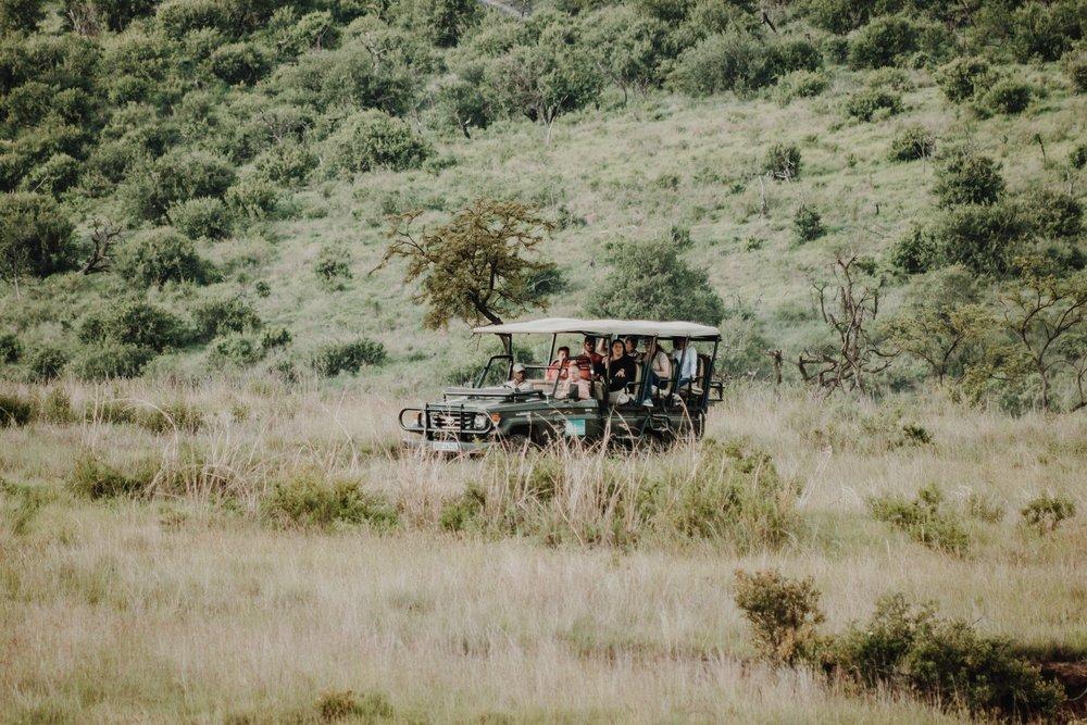 Family safari .jpg