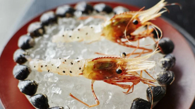 'Ants on a shrimp' uit de gelijknamige documentaire over Noma