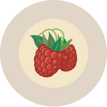 17-Raspberry.png
