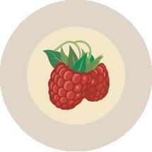 17-Raspberry.png