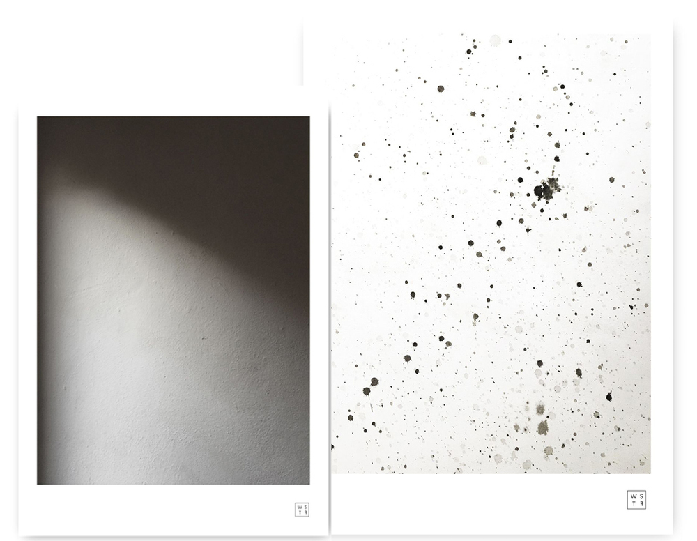 Wallstuff-Posters-Dalmatian.jpg