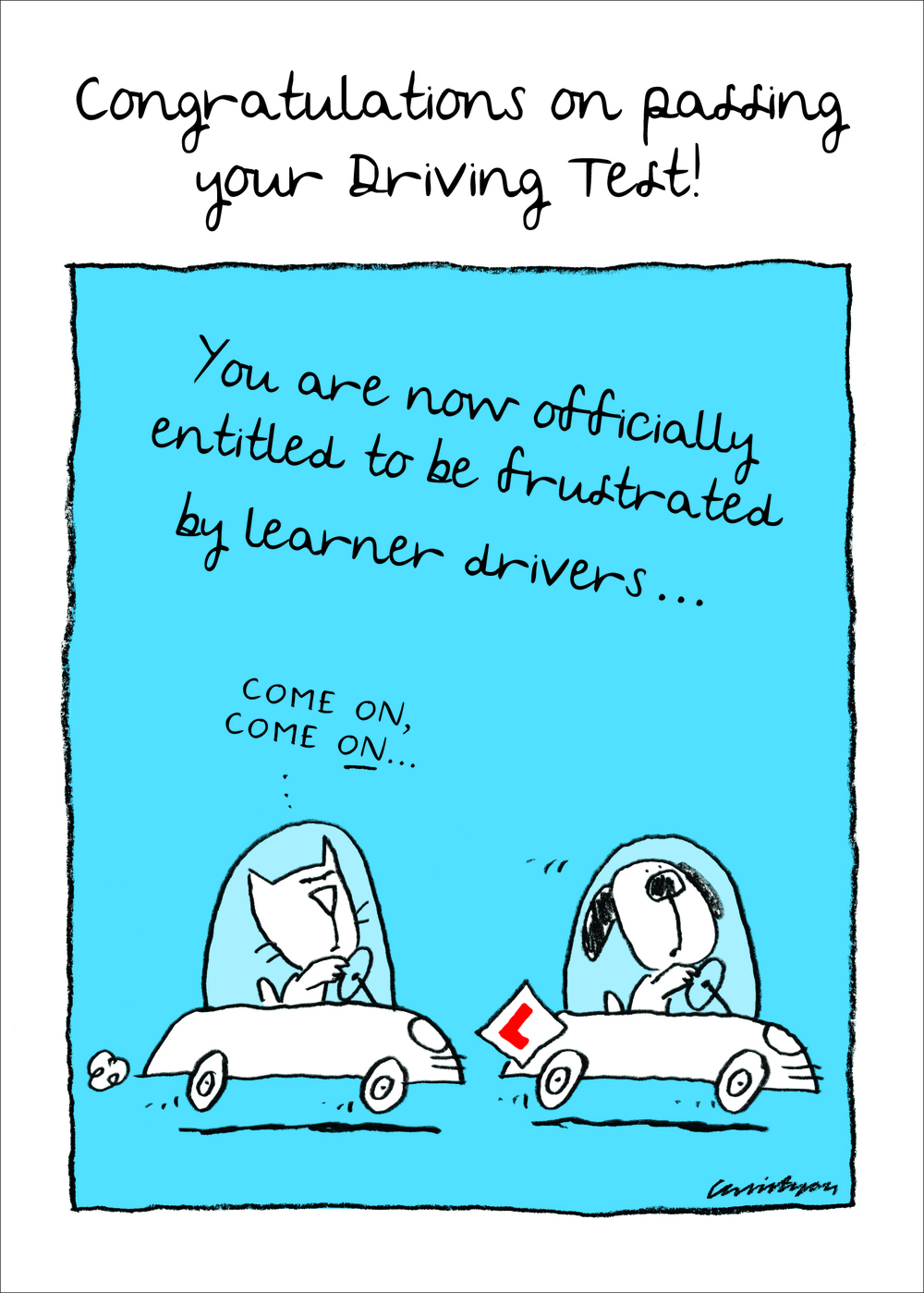3-Driving Test-frustrated.jpg